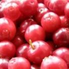 Рецепт Компот из брусники и яблок