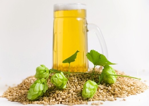 Рецепт Домашнее пиво из хмеля
