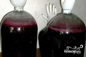 Вино из смородины - фото шаг 5