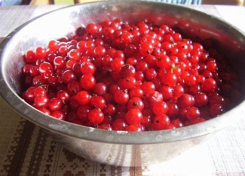 Мармелад из ягод - фото шаг 1