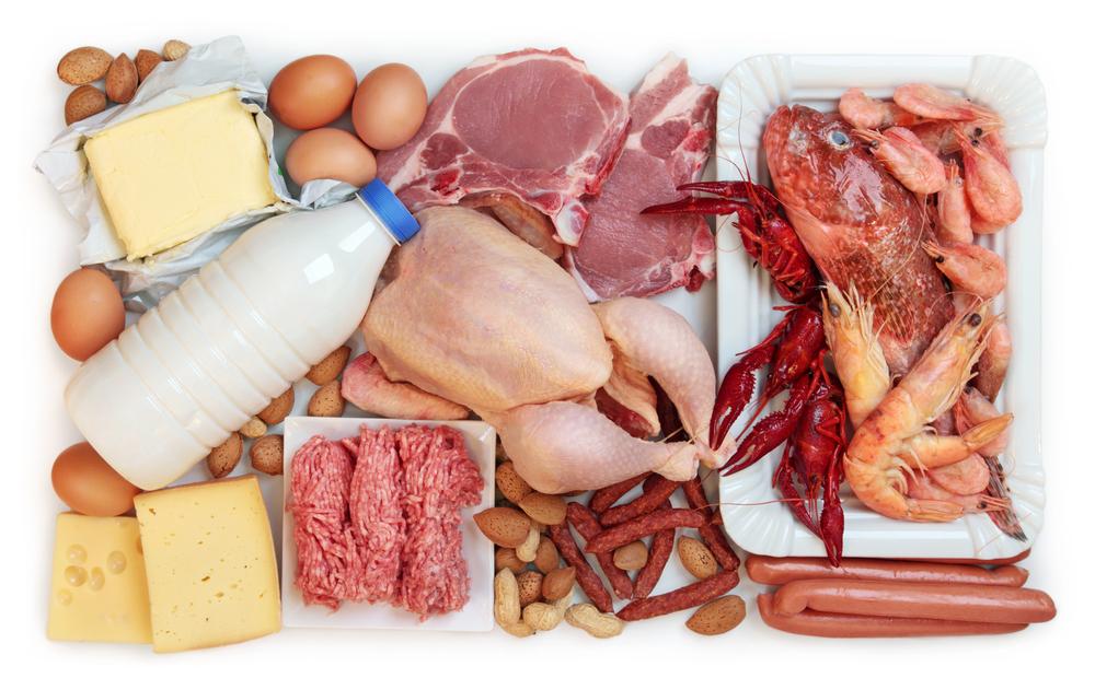 Источник белка-молочные продукты, мясо, морепродукты