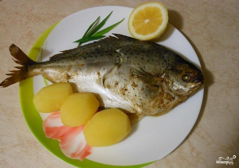 Рыба масляная