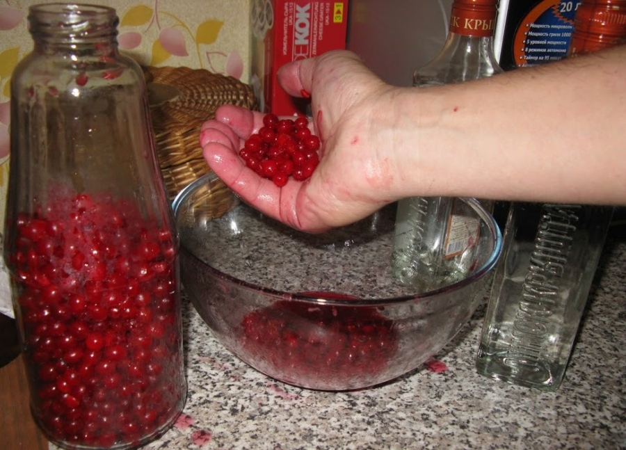 Как из ягод сделать наливку из 90