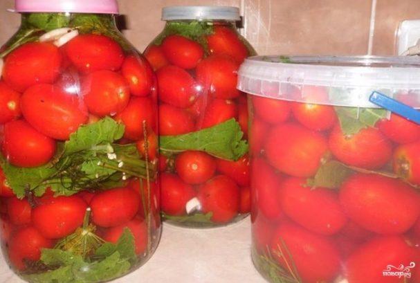 Соленые помидоры без закатки