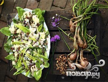 Салат с зеленью, сыром и луком под сливочным соусом