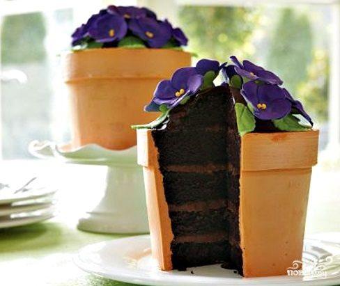 """Торт """"Цветок в горшке"""""""