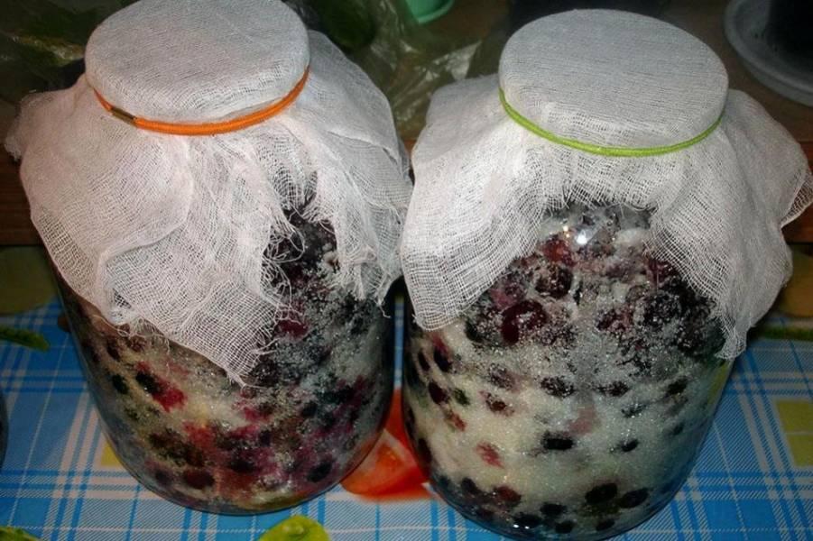 Далее берем кусок марли и складываем его втрое. Накрываем марлей горлышко банок и закрепляем его резинкой или обычной ниткой. Ставим банки в тепло, лучше всего на солнышко, на 3-4 дня.