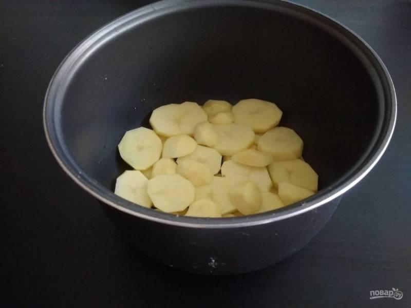 1. Картофель почистите, помойте и нарежьте кружками. Выложите 1/3 часть в чашу мультиварки.