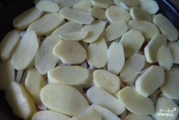 Затем уложите слой лука и картофель. Не забудьте всё посолить.