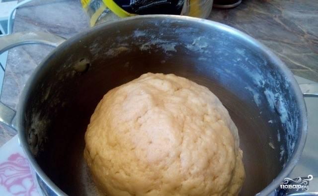 Сначала вмешивайте муку ложкой, а потом руками. Вымесите тесто, постепенно добавляя муку, если это необходимо, чтобы тесто не липло к рукам. Оно должно быть мягким, податливым и эластичным.