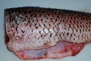 Рыбу почистите от чешуи и распотрошите.