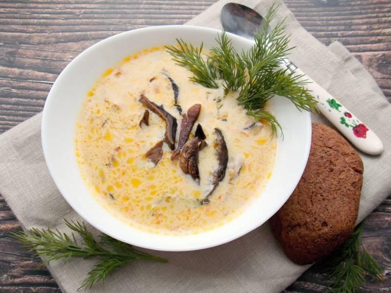 Наш сырный суп с сушеными грибами готов. Разлейте по тарелкам, добавьте укроп и подавайте к столу. Приятного аппетита!