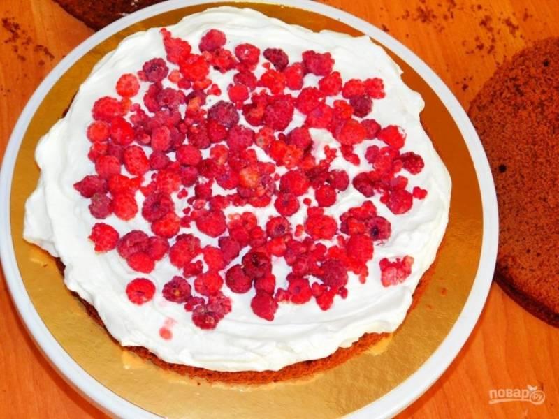 Каждый корж немного пропитайте водой. Смажьте кремом и выложите ягоды малины. Обмажьте верх и бока торта кремом.