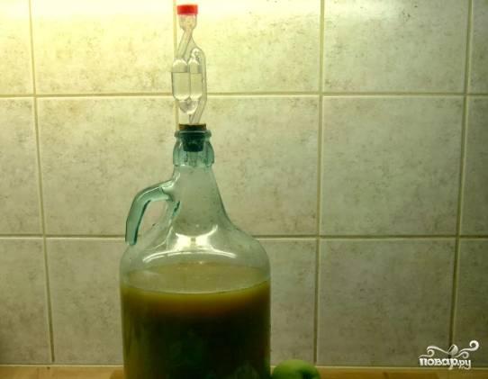 2. В получившийся отфильтрованный сок добавьте сахар. Перелейте все в большую емкость. Закройте емкость гидрозатвором и оставьте вино настаиваться на месяц.