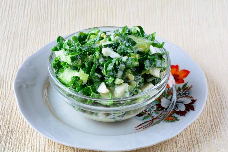 7. Салат перемешайте, посолите и поперчите по вкусу, затем распределите салат в порционную посуду и подавайте к столу.