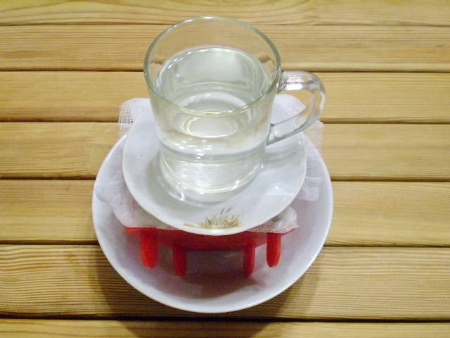 10. Поставьте сверху на края марли блюдечко и чашку с водой. Пресс будет выдавливать лишнюю влагу. Оставляем на 8-12 часов в холодильнике.