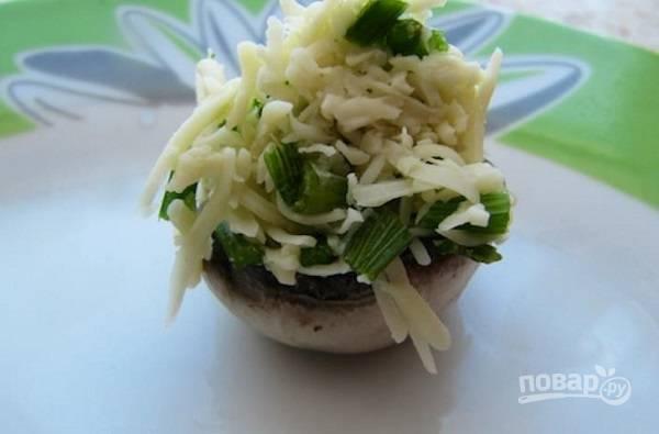 2. Вымойте и обсушите грибочки. Аккуратно удалите ножки. Натрите на терке сыр (около 100 грамм), соедините с измельченной зеленью и пропущенным через пресс чесноком. Наполните шляпки полученной смесью.