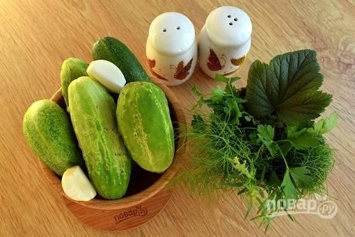 Овощи и зелень вымойте, чеснок очистите.