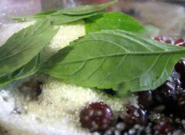 1. Ягоды моем, обсушим и складываем на дно стерильной банки. Засыпаем сахар и выкладываем листья мяты.