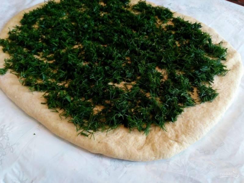 Раскатайте тесто в прямоугольный пласт, толщиной примерно в 1 см и распределите по нему мелко нарезанную зелень укропа, оставляя края теста свободными.