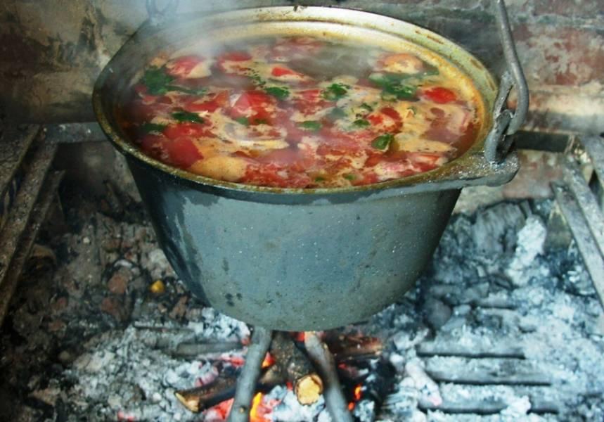 Отправляем картофель в котелок, добавляем лавровый лист, душистый перец, соль и специи по вкусу, варим суп до готовности картофеля. За пару минут до конца варки, выкладываем в котелок измельченную зелень и чеснок.