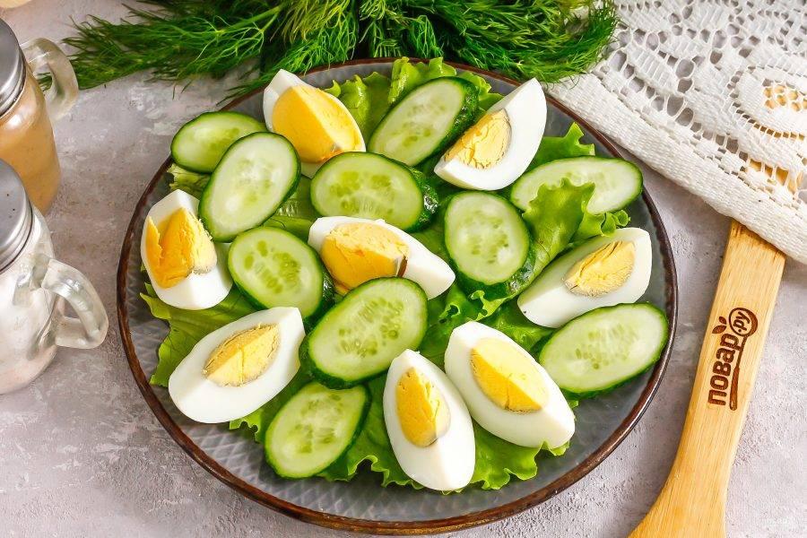 Промойте огурцы в воде, удаляя шипы, срежьте хвостики. Нарежьте ломтиками и выложите на листья салата.