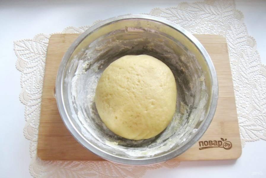 Замесите мягкое, эластичное, не липнущее к рукам тесто. Поставьте его в холод на час.