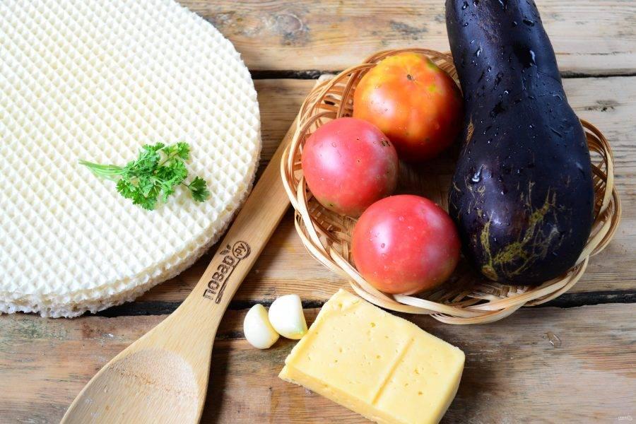 Подготовьте все необходимые ингредиенты. Баклажан и помидоры ополосните, чеснок очистите и мелко порежьте или измельчите с помощью чесночного пресса.