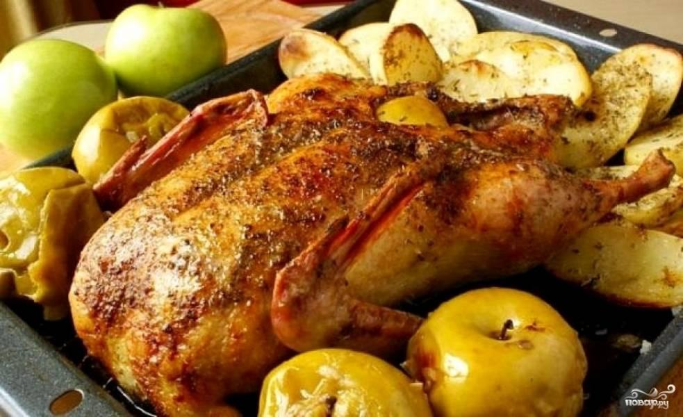 Готовую утку подавать на стол горячей. Только не забудьте вынуть нитки - утка, фаршированная яблоками, так хороша, что ваши гости могут слопать их и не заметить!;)