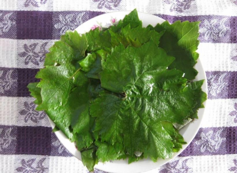 Подготовьте свежие виноградные листья. Тщательно их промойте и замочите в холодной воде на 15 минут. Черешки обрежьте.