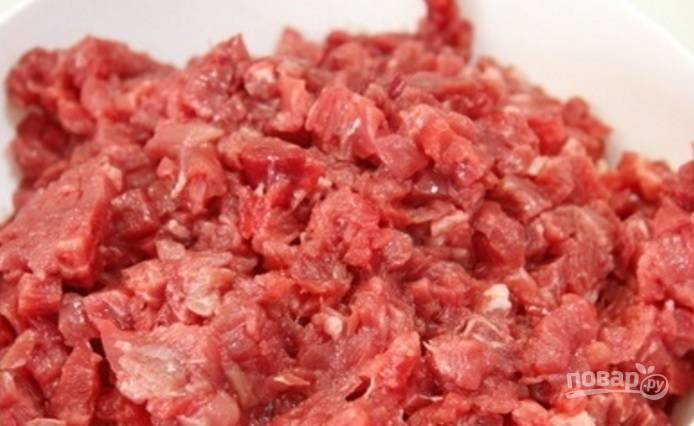 Мясо промойте, обсушите и мелко нарубите.
