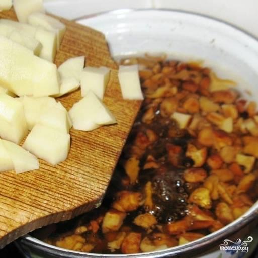 По истечению оговоренных выше 15 минут варки лисичек добавляем в кастрюлю кубиками нарезанный картофель. Варим еще 10-15 минут - до готовности картофеля.