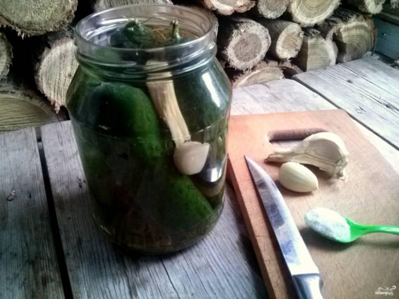 Приготовьте рассол: на 1 литр питьевой воды добавьте 60 граммов соли. В  трехлитровую банку сложите 40 граммов укропа, 5-6 очищенных зубчиков чеснока, хрен (корень и лист), 2 килограмма огурцов, залейте всё рассолом.
