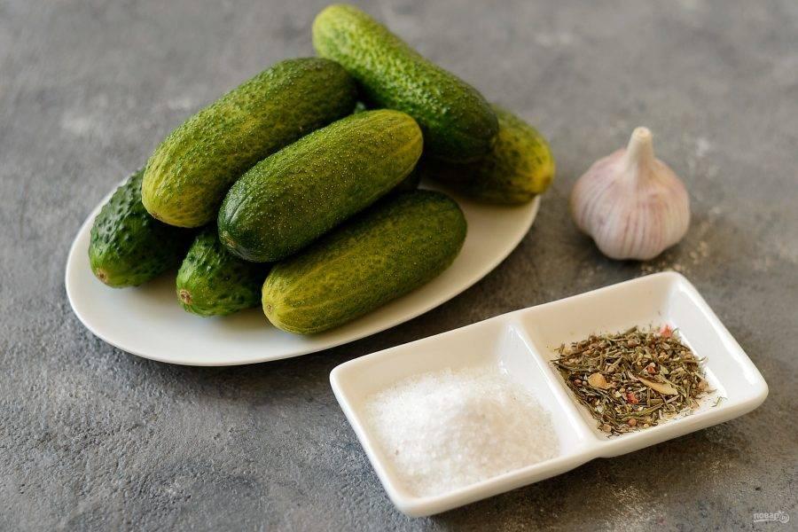 Подготовьте все ингредиенты. Огурцы хорошо помойте, затем замочите в холодной воде на 3-5 часов.