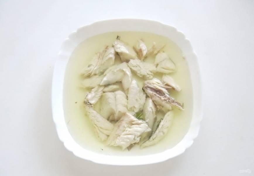 Залейте рыбу бульоном с желатином.