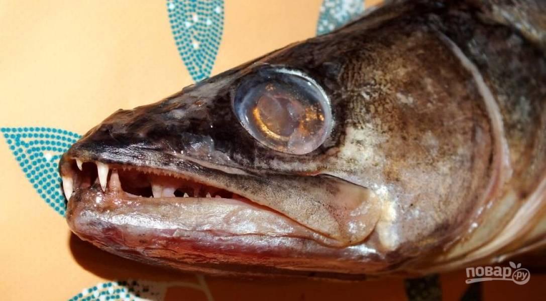 Рыбу очистите, распотрошите и натрите солью.