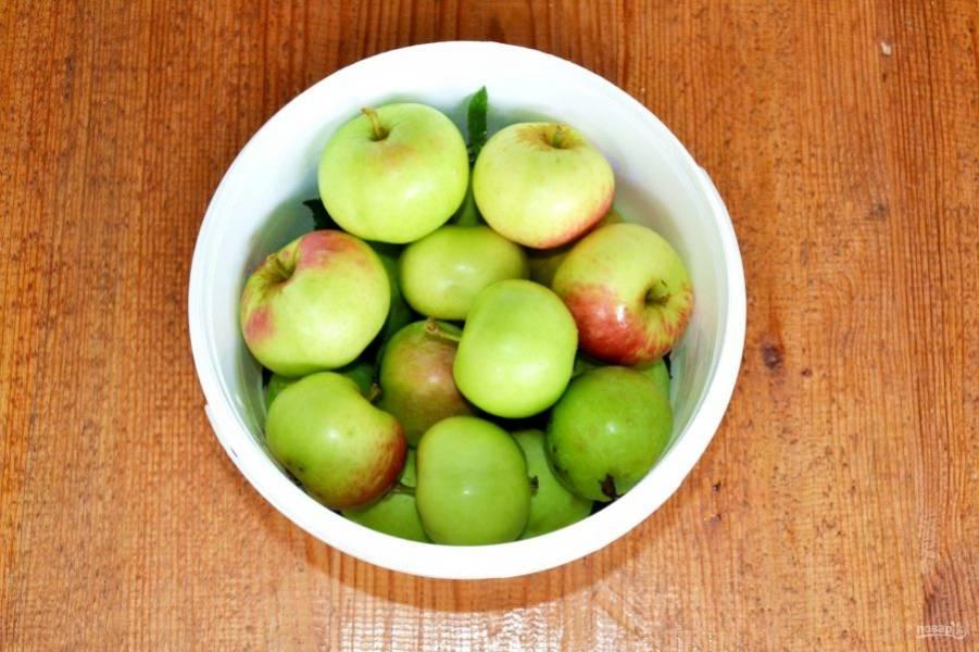 Плотно уложите яблоки.
