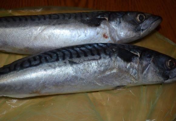 1. В данном случае в рецепте приготовления рыбы, запеченной с рисом, используется скумбрия, однако можно взять и любую другую рыбку.