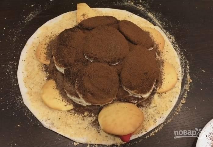 9. Присыпьте торт какао, а потом тертым шоколадом. Края блюда можно присыпать светлым песочным печеньем. Голову, лапки и хвост черепахи приклейте кремом, а их основание присыпьте тертым шоколадом.