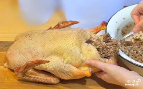 Фаршируем утку. Берем столовой ложкой начинку, плотно закладываем внутрь утки.