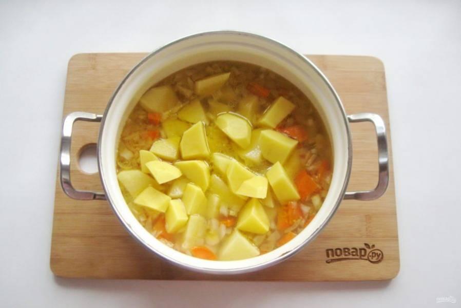 Картофель нарежьте и выложите в суп. Добавьте бульон, посолите по вкусу. Варите суп до готовности всех ингредиентов.