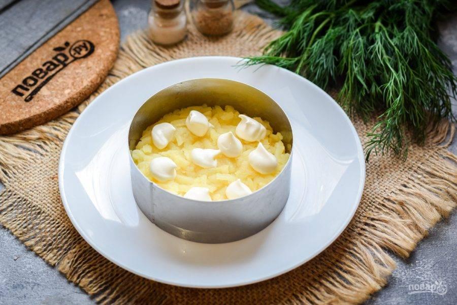 Смажьте слой картофеля майонезом, каждый слой салата солите и перчите по вкусу.