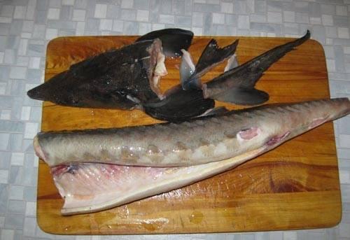 1. Первым делом необходимо заняться рыбкой. Осетра нужно очистить от головы, плавников и внутренностей.