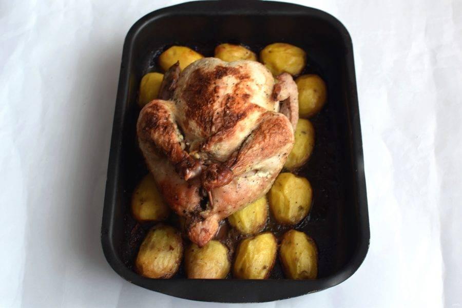 Запекайте курицу в разогретой до 180 градусов духовке до румяной корочки. Проверьте готовность птицы проколом с помощью тонкого ножа – сок должен быть абсолютно прозрачным. Готовой птице дайте постоять под фольгой минут 20.