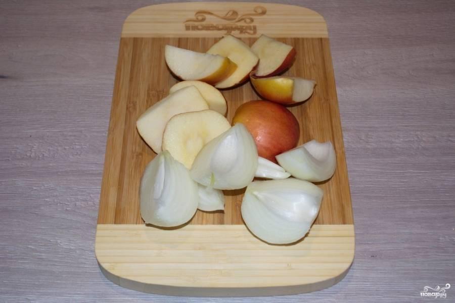 Яблоки необходимо очистить от семян и нарезать средними кусочками. Кочанчик выбросите. Репчатый лук очистите и разрежьте на 4-6 частей.