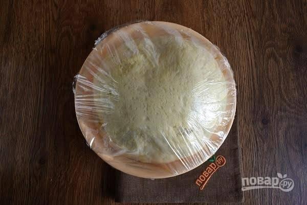 4. Накройте тесто пищевой пленкой и поставьте миску в теплое место для подхода на 1,5 часа. Тесто должно увеличиться в объеме в 2 раза.