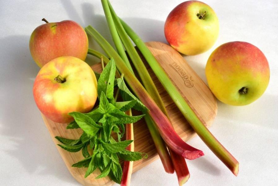 Яблоки, ревень и мяту вымойте.