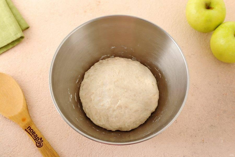 Подсыпая частями оставшуюся муку, замесите мягкое, чуть липкое тесто. Соберите его в шар, смажьте маслом, накройте миску пищевой пленкой и оставьте на 1,5 часа. Тесто должно увеличиться примерно в 2 раза.