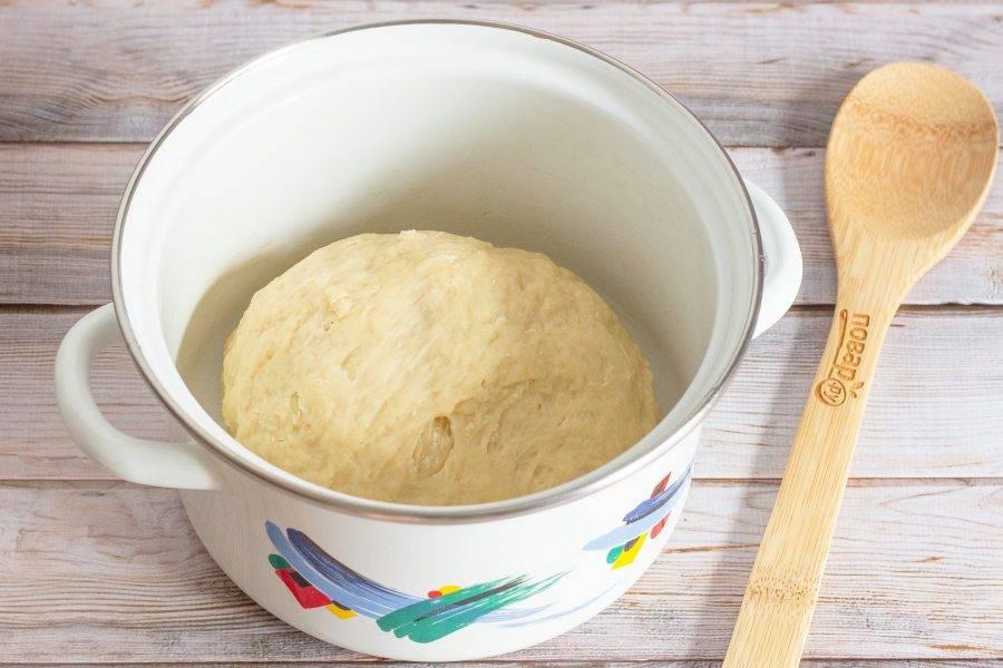 Постепенно введите просеянную муку и соль, замесите тесто. Емкость смажьте небольшим количеством растительного масла, выложите туда тесто, накройте и поставьте в теплое место, чтобы тесто поднялось. На 1 час.