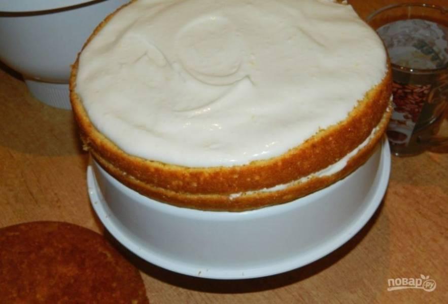 Для крема взбейте сметану с сахарной пудрой, вмешайте 100 г творога и цедру лимона. Коржи можно пропитать немного сладкой водой. Затем смажьте их кремом.